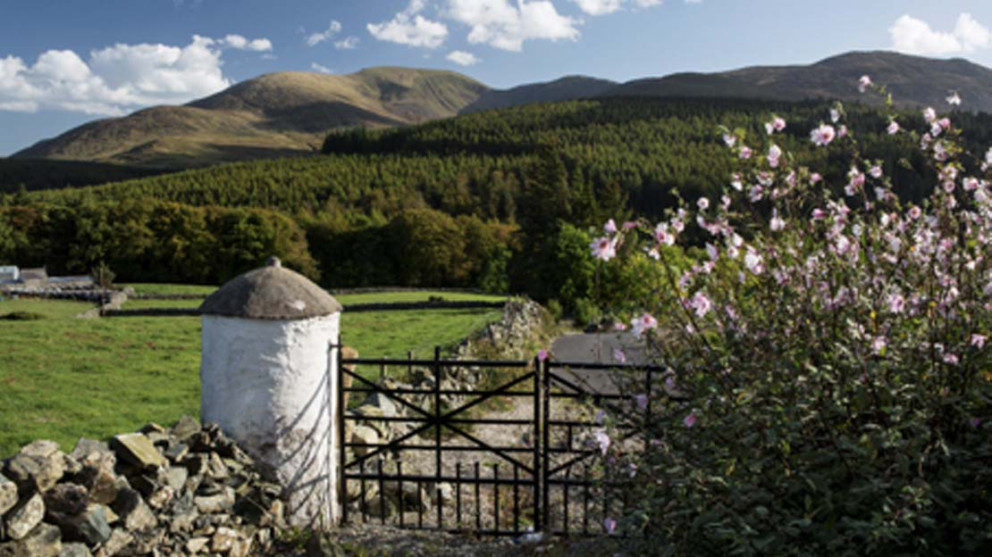 iron gateway in Mourne mountains white washed pillar