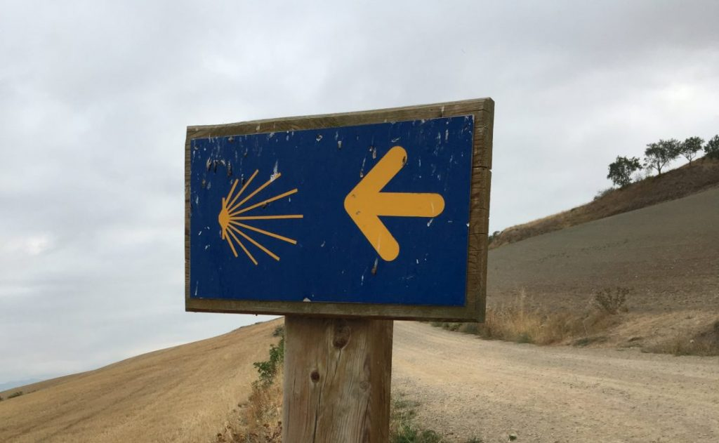 Camino arrow sign on wooden post