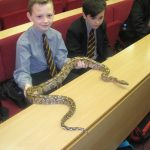 Pupil holding a snake