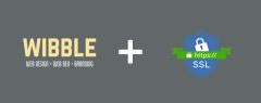 ssl-security-armagh-hosting-wibble-featured