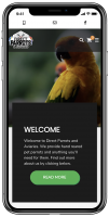 Direct Parrots project by Wibble