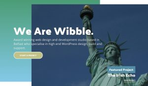 Irish Echo Featured Project on Wibble Homepage